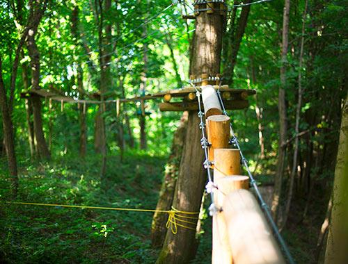 accrobranche arbre lyon vanciaventure parc aventure